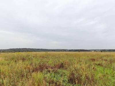 Дачникам из Щёлковского района снизили кадастровую оценку земли в два раза