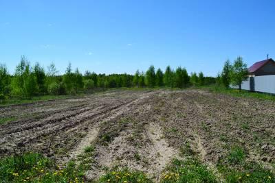 Земельный участок в деревне Огуднево Щёлковский район